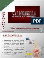 Cap 9 Salmonella 2011[1]