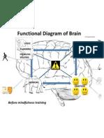 Brain Function Diagram - BEFORE Mindfulness Training