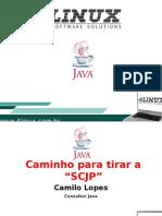 Caminho Para Tirar a SCJP - Camilo Lopes - Slides