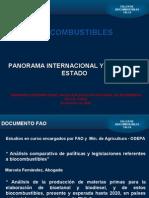 FAO - Bio Combustibles, Panorama Internacional y Vision Del Estado - Nov 2006