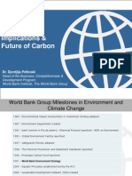 Global Implications and Future of Carbon Petkoski