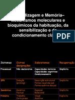 4 - Aprendizagem e Memória– Mecanismos moleculares e bioquímicos