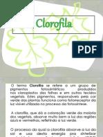 Clorofila