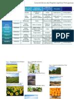 Geografia Caracteristicas Regioes Agrarias Portuguesas Denisealmeida
