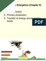 16 - Ecosystem Energetics