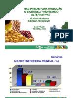 PalestraDiretoPresidenteProducaoBiodiesel