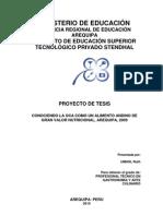 Esquema Proyecto de Tesis 2010 (2)