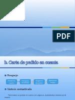 Presentación adryan