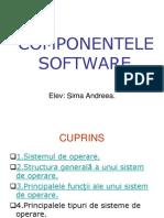 Componentele Software