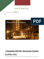Bhushan Power & Steel Ltd.