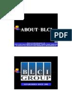 BLCI Profile Eng_3!06!54