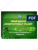 5.5.2 Melakukan Pembiakkan Tan Scr Vegetatif