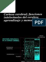 Neuro3
