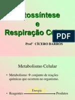 fotossintese e respiração