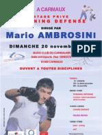 Affiche Stage Mario Ambrosini