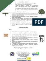 A importância das árvores