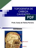 Topografia de cabeça_cavidades