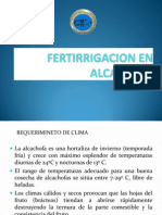 FERTIRRIGACION ALCACHOFA