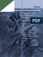 1 El Sector de Los Minerales y El Desarrollo Sustentable