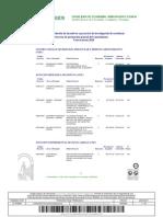 Anexo I Resolución PGC 2010
