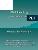 DNA Fingerprinting Power Point
