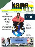 linkageLinkz Issue 1 Volume 1