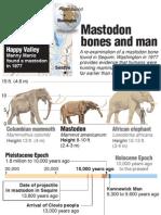 Comparing Mammoth, Mastodon and Elephant