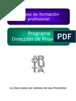 pmi Direccion de proyectos