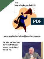 pspprezentare-100218113327-phpapp01