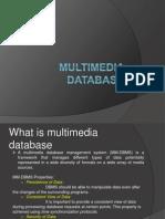 Multimedia Database
