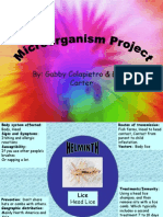 finished Microorganism Project