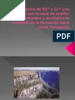 La eliminación de Pb pdf