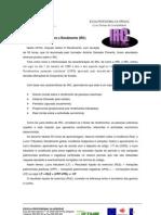 Imposto Sobre o Rendimento (IRC)