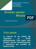 Presentación Division Celular