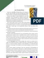 Deontologia e Principios Éticos