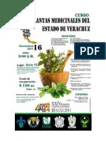 Simposio- Plantas Medicinales