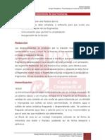 2.5._tecnicas_de_tratamiento_de_las_fracturas