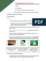 ENTOMOLOGÍA AMBIENTAL Y APLICADA (TEMAS 1, 2 Y 3)