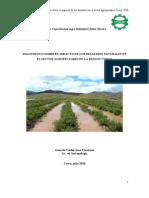 Diagnostico Agropecuario Desastres Cusco 2010