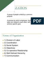 Organization Final