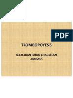 TROMBOPOYESIS