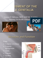 Student Assessment of the Male Genitalia ACTUAL