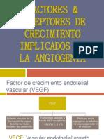 Factores & Receptores de Crecimiento Implicados en La