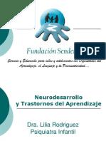 Diapositivas Neurodesarrolllo y Dislexia