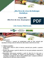 Francisco Vilella - Projeto Alho Livre de Vírus - EMBRAPA CNPH