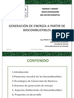 Energias Renovables_ Biocombustibles