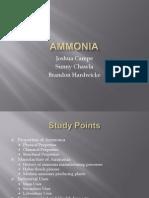 ammonia-101011064553-phpapp02