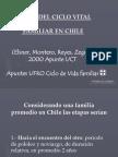 Etapa Ciclo Familiar 2[1]