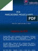 Aula 04 PCR e Mar Cad Ores Moleculares Farmacia