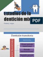 Estadios de la dentición mixta